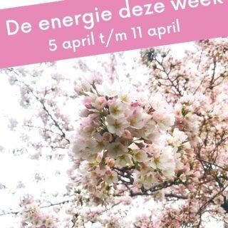 Yes, het is lente! Tijd voor een frisse energie door je leven. Je hebt weer zin om op te ruimen, om nieuwe verfrissende stappen te zetten. Om de bullshit (pardon my French) van je stoffige veren af te schudden, om een verfrissende 'duik' te nemen en om als herboren nieuwe stappen te zetten. Dit is dé week, om te verfrissen.  Cut the bullshit. Go for it.  #afstemming #channeling #energie #dezeweek #lente #lentekriebels #lentegevoel #lentebloemen #lenteinjebol #verfrissend #levensenergie #paulettekreuk #spreidjeveren